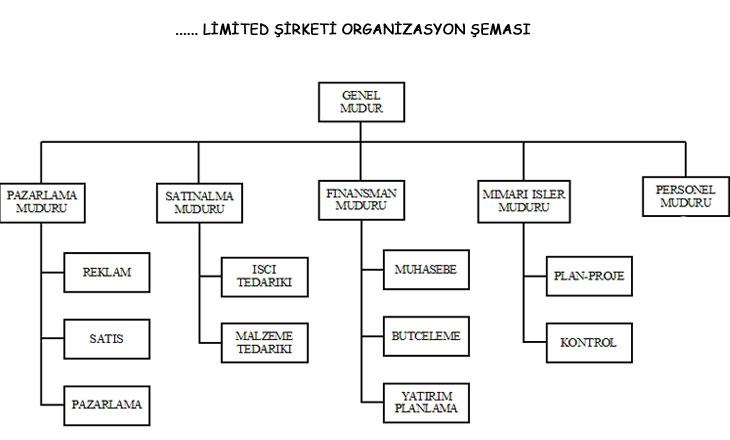 Şirket nasıl bir organizasyon içinde çalışacak nasıl bir iş